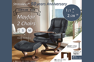 Mayfair 2 Chairs